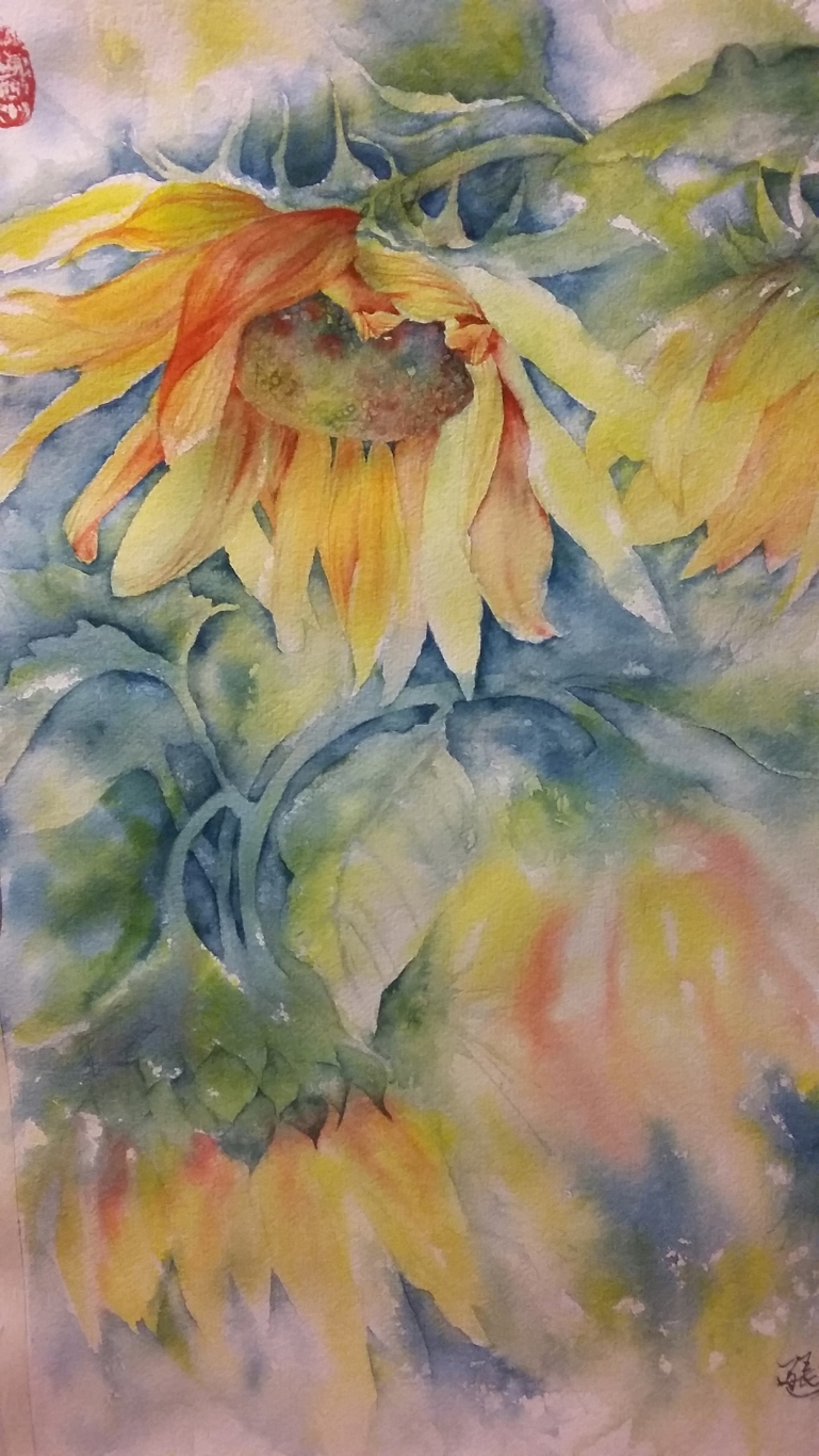 sunflowerlg