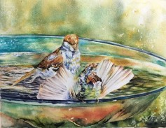 Splish splash 9x12 watercolour