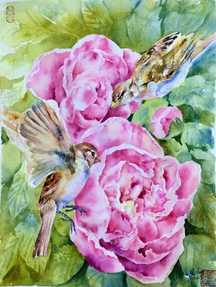 Sparroes and Peony11x14 watercolour